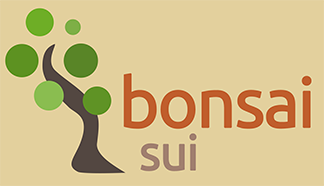 Bonsai home page
